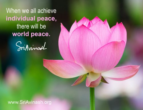 There will be world peace quote magnet - Sri Avinash