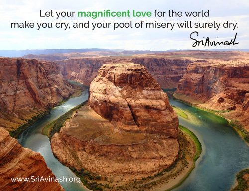 Your Magnificent Love Quote Magnet - Sri Avinash