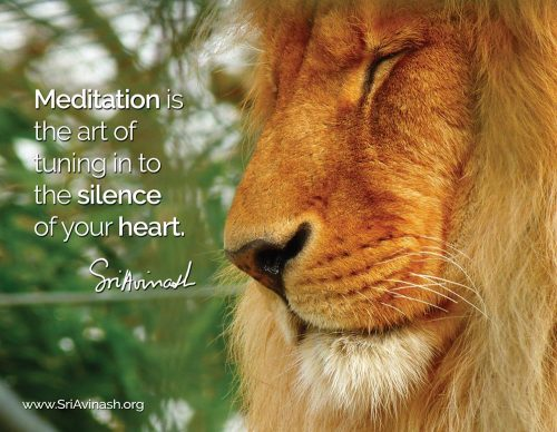 The Art of Meditation Quote Magnet - Sri Avinash