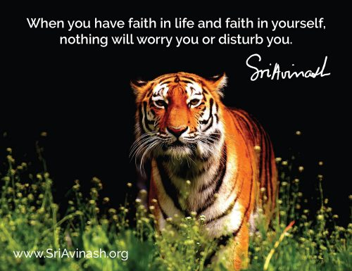 Faith in life quote magnet - Sri Avinash