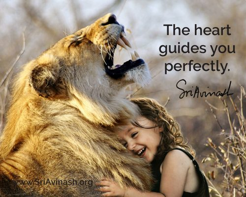 The heart guides you perfectly quote magnet - Sri Avinash