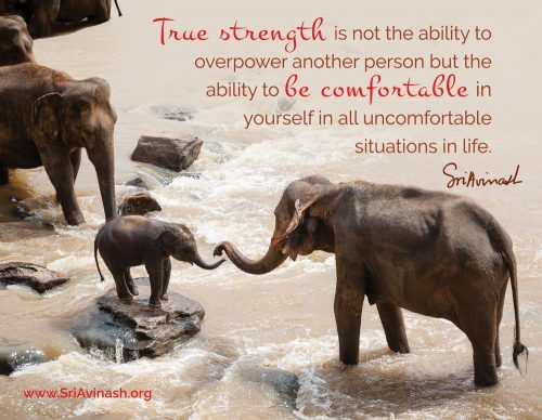 True strength in yourself quote magnet - Sri Avinash