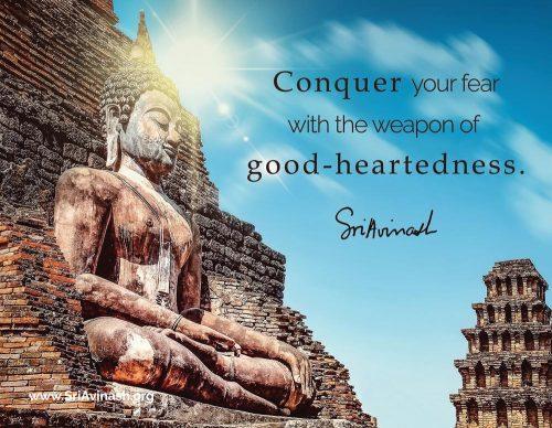 Conquer Fear quote magnet - Sri Avinash