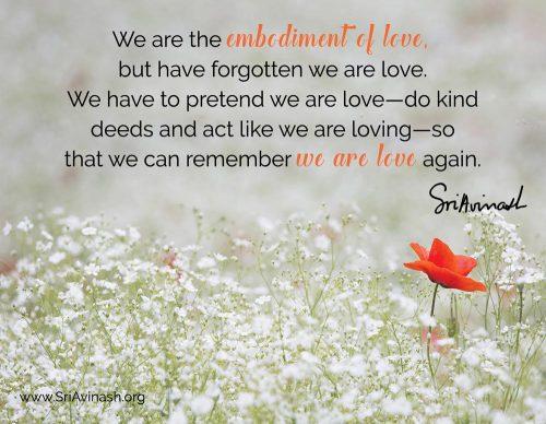 Embodiment of Love Quote Magnet - Sri Avinash