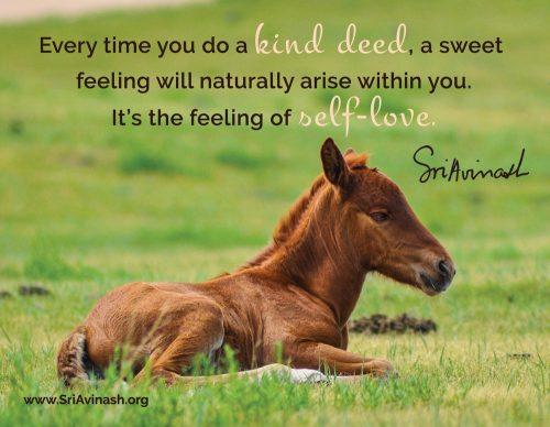 The Feeling of Self-Love Quote Magnet - Sri Avinash