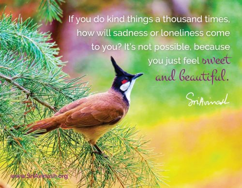 A thousand kind things quote magnet - Sri Avinash