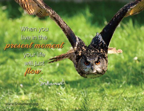 Present moment flow quote magnet - Sri Avinash