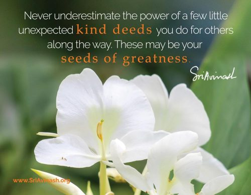 seeds of greatness quote