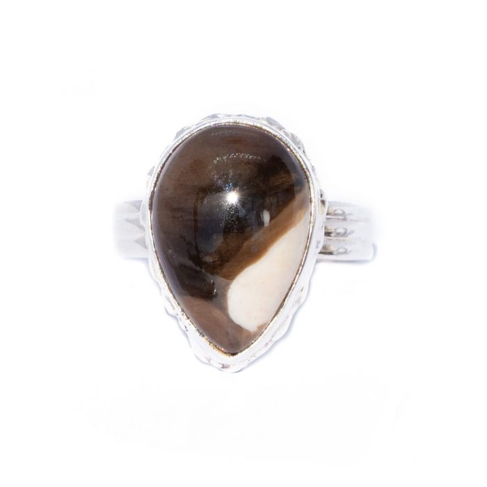 Sri Avinash Infused™ Petrified Peanut Wood Ring in Sterling Silver - Relationships & Prosperity Infusion